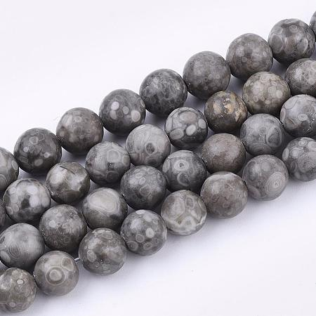 Natural Maifanite/Maifan Stone Beads StrandsG-Q462-8mm-21-1
