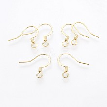 316 Stainless Steel Earring Hooks X-STAS-P221-02G