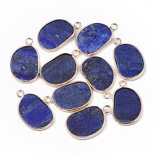 Natural Lapis Lazuli Pendants X-G-S359-019A