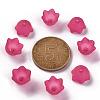 Transparent Acrylic Beads CapsPL543-12-4