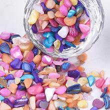 Shell Beads MRMJ-S034-06G