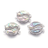 Natural Abalone/Paua Shell Box ClaspsSSHEL-J005-05A-1